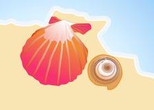 Dibujo de dos conchas marinas por el mar stock de ilustración