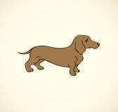 Dibujo de esquema del vector Perros y chuchos criados en línea pura Fotos de archivo libres de regalías