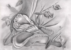 Dibujo de lápiz con la concha marina y las perlas Imágenes de archivo libres de regalías