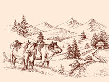 Dibujo de la granja de las vacas libre illustration
