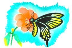 Dibujo de la mariposa Fotos de archivo