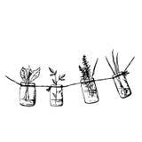 Dibujo de la tinta con verdor Fotos de archivo libres de regalías
