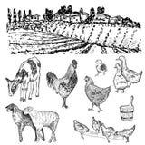 Dibujo de las manos de granja Foto de archivo libre de regalías