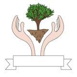 Dibujo de las manos que protegen un árbol verde Fotos de archivo libres de regalías