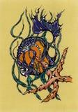 Dibujo del color de los pescados y de las estrellas de mar Imágenes de archivo libres de regalías