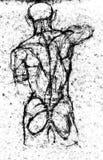 Dibujo del estudio del cuerpo de la parte posterior del ser humano de la anatomía Imagen de archivo