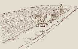 Dibujo del vector. Agricultura primitiva. Campesinos tr stock de ilustración