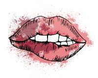 Dibujo del vector del bosquejo, labio mordido en el fondo libre illustration