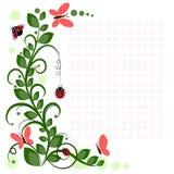 Dibujo del vector con las flores y los insectos Fotos de archivo libres de regalías