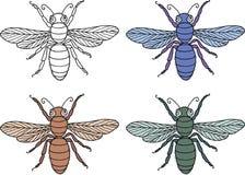 Dibujo del vector de las moscas decorativas Foto de archivo