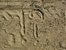 Dibujo en el césped de la naturaleza del bosque de la arena fotos de archivo libres de regalías