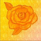 Dibujo exhausto de Rose de la mano en fondo coloreado creyones Drenaje del arte de los creyones Ilustraciones muy creativas y luj ilustración del vector