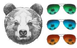 Dibujo original del oso ilustración del vector