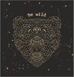 Dibujo principal del vintage del oso Imagenes de archivo