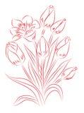 Dibujo rojo y blanco stock de ilustración