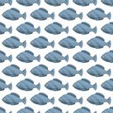 Dibujos inconsútiles modelo, ejemplo de los pescados del vintage del vector Fondo de la vida marina del estilo del grabado Elemen ilustración del vector