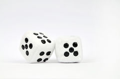 Dice. Two dice isolated on white Stock Image