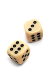 Dice. To play dice on a white background Royalty Free Stock Photos