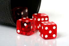 Dice. Red dice thrown from dice cup onto white background stock images