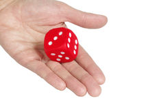 Dice. Palm on white background , with dice of the red colour stock images