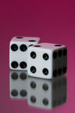 Dice against pink Stock Photography
