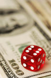 Dice and banknotes, Stock Photos