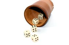 Dice box Stock Photos