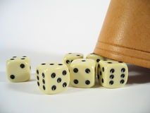 Dice Box Close-up Stock Images