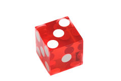 Dice of the casino Stock Images