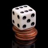 Dice and coins. A white dice on the cooper coins Stock Image