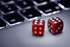 Dice on computer keyboard Stock Photos