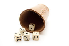 Dice cup with cube Stock Photography