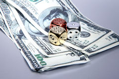Dice dollars money risk Royalty Free Stock Photo