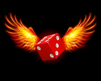 Dice-Fiery wings. A color illustration on a black background Royalty Free Stock Images