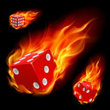 Dice in fire Stock Photography