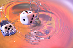 Dice Game In Water Royalty Free Stock Photography