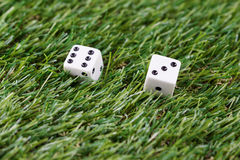 Dice on grass Royalty Free Stock Photos