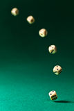 Dice  on green table Stock Image