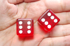 Dice in hand Royalty Free Stock Photo