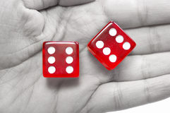 Dice in hand Stock Photography