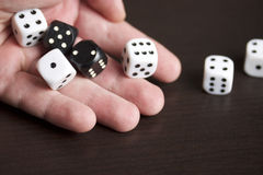 Dice in the hand of man. Stock Photography