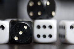 Dice. Playing cubes. Royalty Free Stock Photo