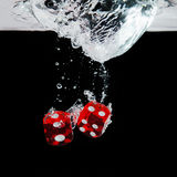 Dice playing in the water Stock Images