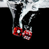 Dice playing in the water Royalty Free Stock Photography