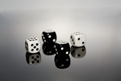 Dice Reflecting Stock Photos