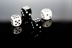 Dice Reflecting Royalty Free Stock Photos