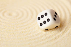 Dice on sand in rock garden Royalty Free Stock Images