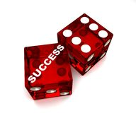 Dice-Success Royalty Free Stock Photos