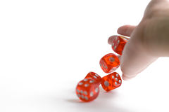 Dice  on white. Background Stock Images