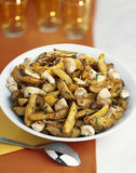 Diced chicken with apple wedges Stock Photos